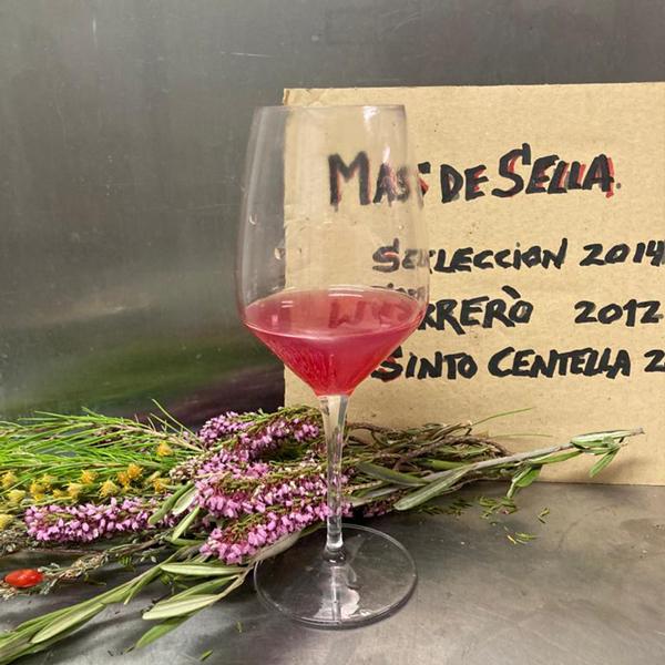 Copa de vino Mas de Sella Rosé