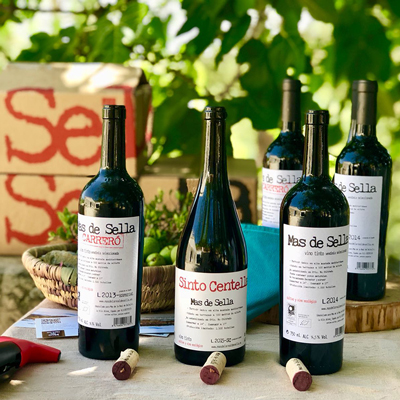 Enoturismo Mas de Sella cata de vinos en la viña