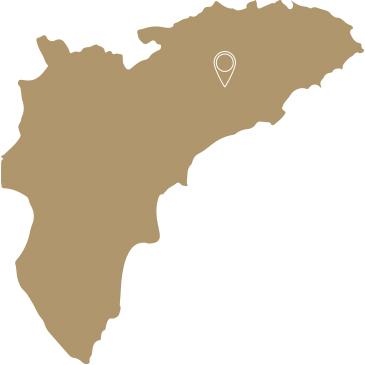 Mapa localizacion viñedo Mas de la Real Sella